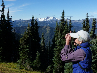 A birder is looking for birds on Obstruction Point Road at Hurricane Ridge with snow-capped Mount Olympic towering in the background