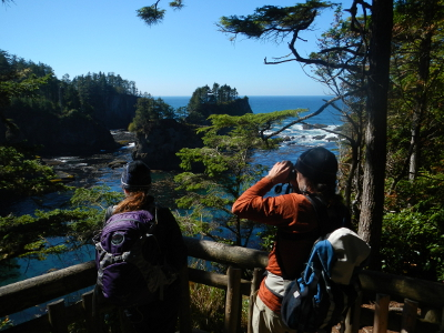 A couple using binoculars and looking for wildlife from one of the Cape Flattery platforms