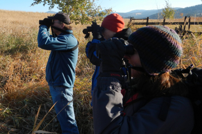 Three birders looking through binoculars from Experience Olympic