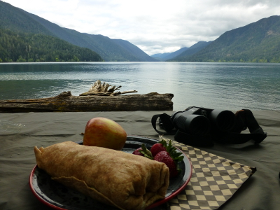 A lunch wrap, apple, and strawberries on a plate next to binoculars with a view of Lake Crescent and the surrounding Olympic Mountains in the distance