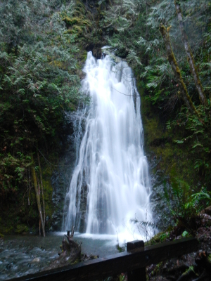 Adventure Elwha River Hikes For Each Season Of The Year