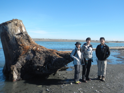 Three adults and one baby pose by a giant tree stump at the mouth of the Elwha River