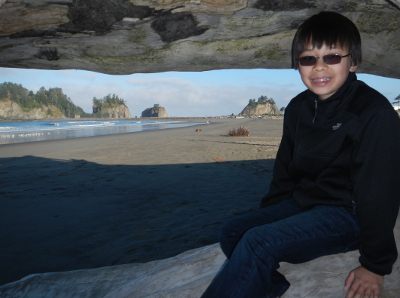 A boy sits smiling in a huge old-growth tree with the offshore islands near First Beach visible in the background
