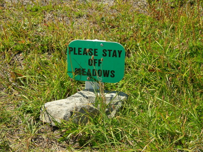 "Sign in a subalpine meadow in Washington State reads ""Please Stay Off Meadows"""