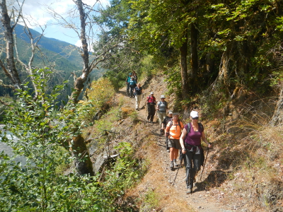 A line of 12 hikers coming down a trail parallel to the Elwha River in Olympic National Park