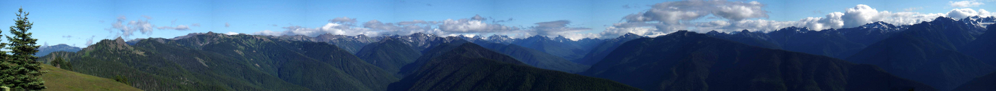 Panoramic View of the Olympic Mountains from Hurricane Ridge including Lillian, Elwha, and Long Valleys