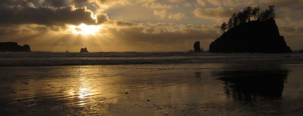 Olympic National Park beach viewed at sunset with a large silhouetted tree-lined rocky islet and smaller sea stacks in the background