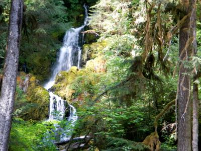 Mineral Creek Falls on the Hoh River trail in Olympic National Park
