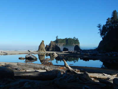 Overlook view of Ruby Beach in Olympic National Park