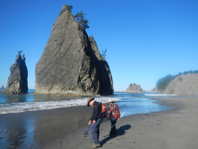 Two hikers walk along Rialto Beach with a large headland and Hole in the Wall in the distance