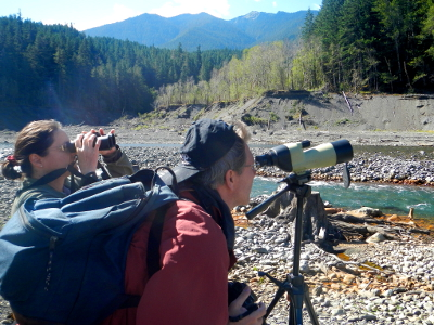 Two Elwha River hikers look through a spotting scope and binoculars at a Bald Eagle perched across the Elwha River