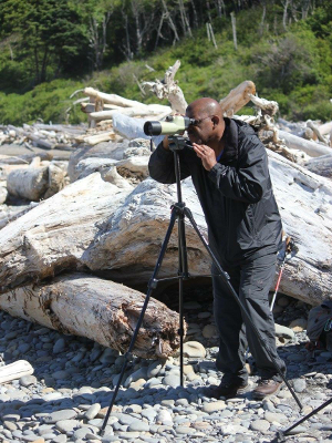 A participant looks through a spotting scope at the beach with huge drift logs in the background