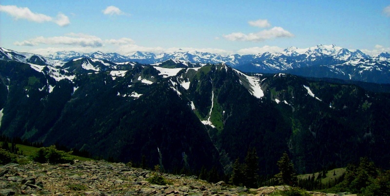Late season snow presents a stunning view of the Olympic National Park mountains on a tour up to Hurricane Ridge
