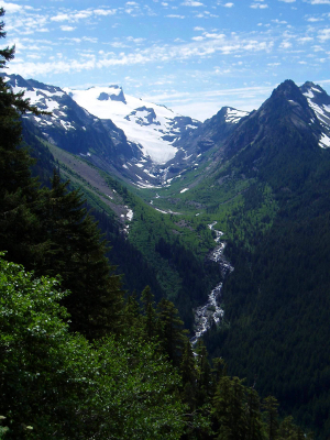 Looking up the steep gradient valley of a glacier-fed stream to the Olympic mountain peaks and associated glaciers