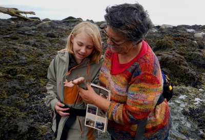 A grandmother holding a laminated Pacific Northwest tide pool guide looks at at very small tide pool snail that her granddaughter is holding in her outstretched hand