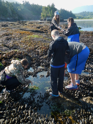 Five children of various ages gather around a Pacific Northwest tide pool created on a bed of California Mussels and search for animals