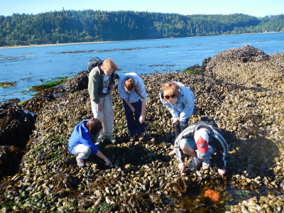 A group of five people of various ages on a mussel bed observing a Pacific Northwest tide pool with a large orange sea star
