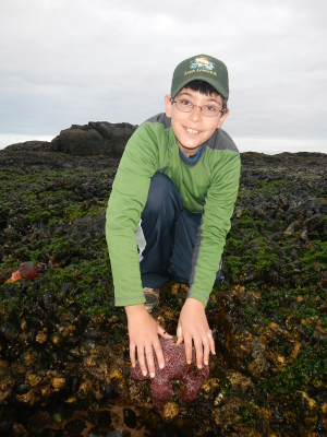 A smiling boy places both hands on a large purple common starfish on a rocky shore set against the Salish Sea