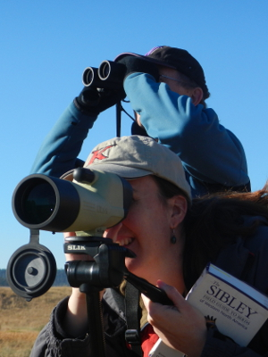 Olympic Guide and participant looking at birds with spotting scope and binoculars