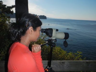 A woman with a coral shirt stands looking through a spotting scope at birds and mammals in the Strait of Juan de Fuca