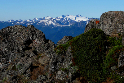 Glacier-covered Mount Olympus peeks up behind some lichen-covered rocks