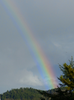 Rainbows, like the one pictured, show the full visible colors of the electromagnetic spectrum